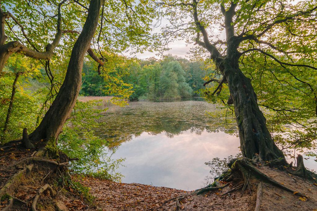 Trimm-Dich-Teich